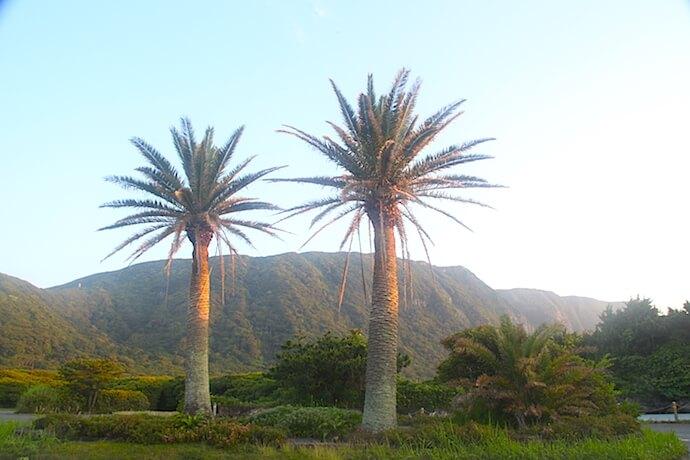 Habushiura Park